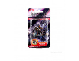 D&D: Icons of the Realms – Dragonborn Female Paladin - Premium Figures